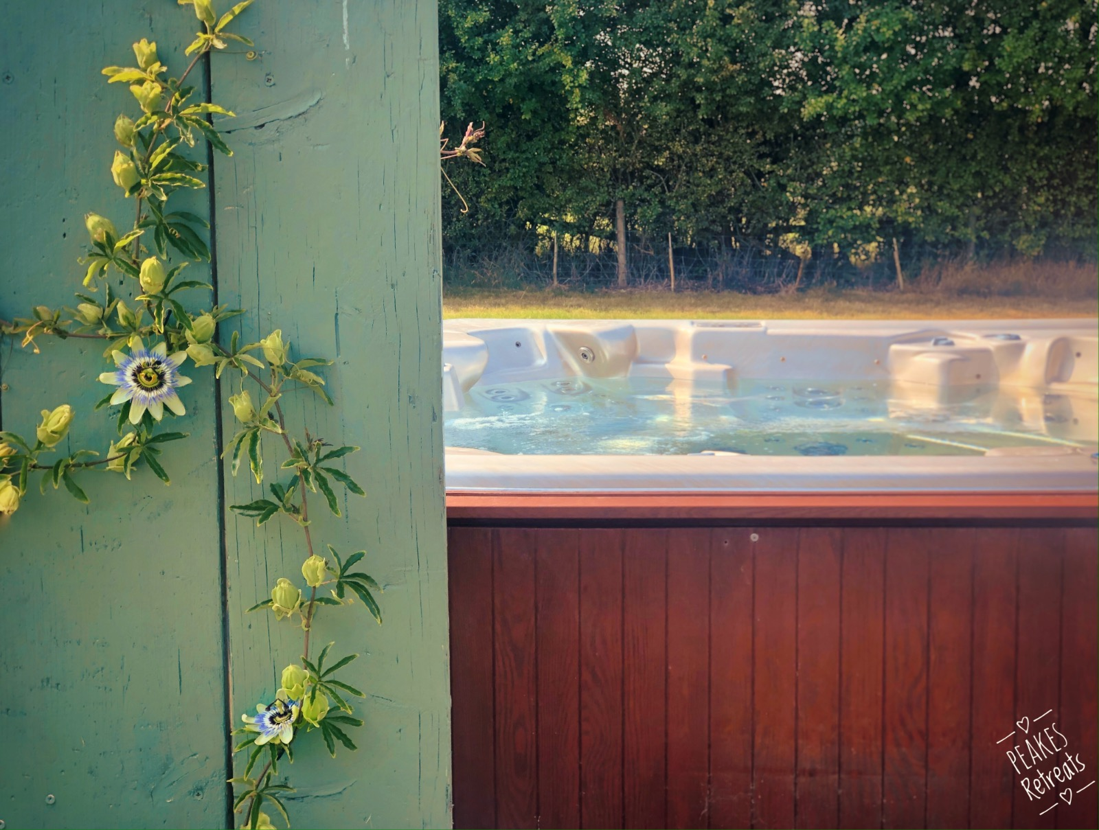 Hot tub with privacy screens and passionflowers