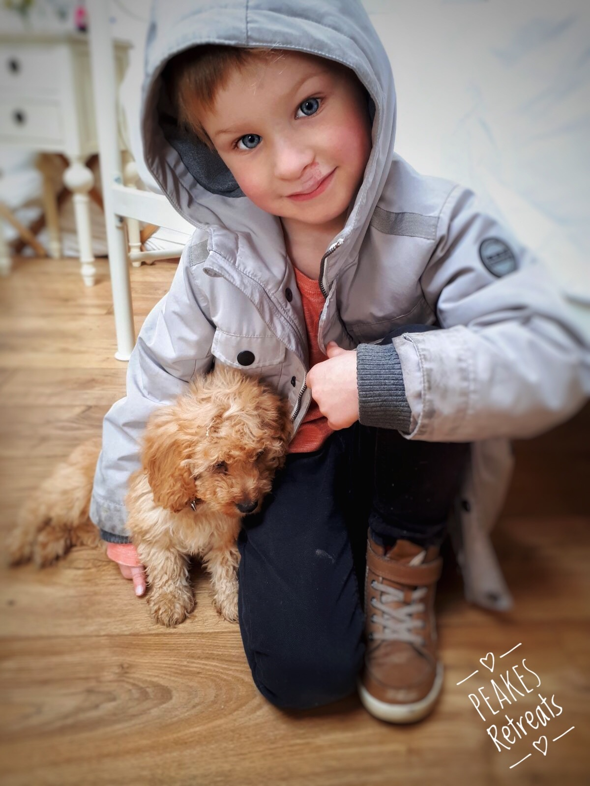 Little boy with cute cockapoo puppy in glamping yurt