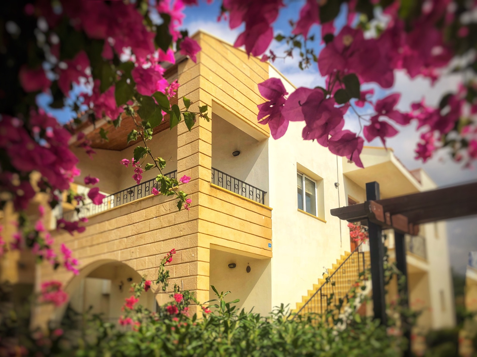 North Cyprus holiday apartment surrounded by beautiful flowers.