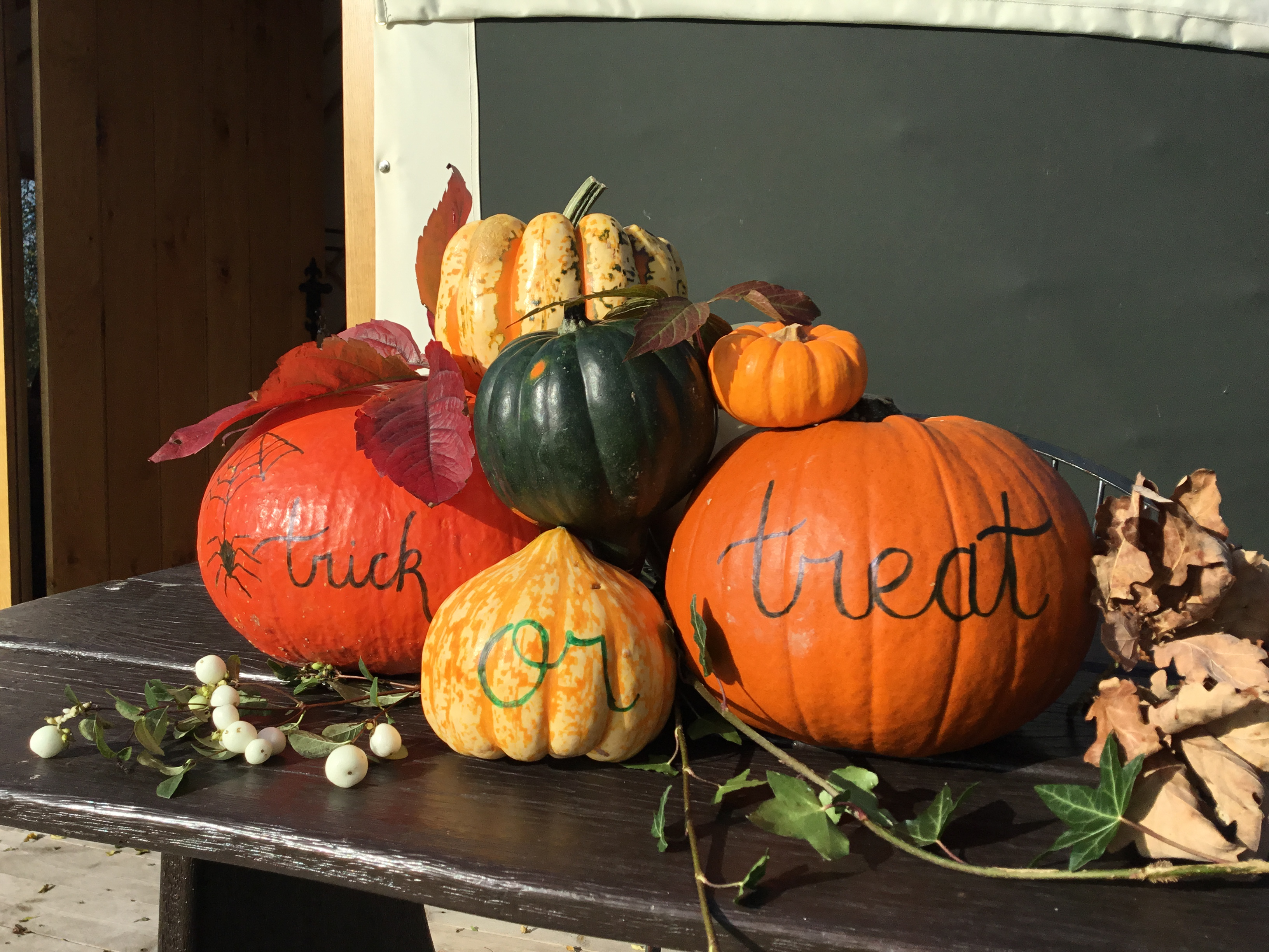 Pumpkins, trick or treat. Yurt