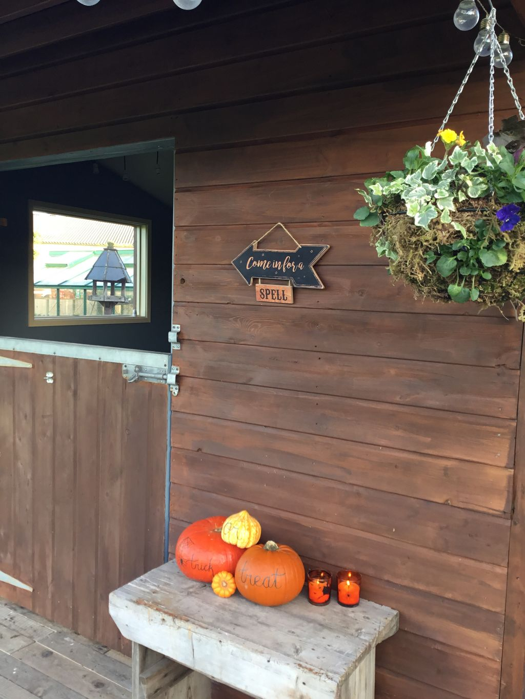 Cooking cabin kitchen ready for Halloween with Pumpkins