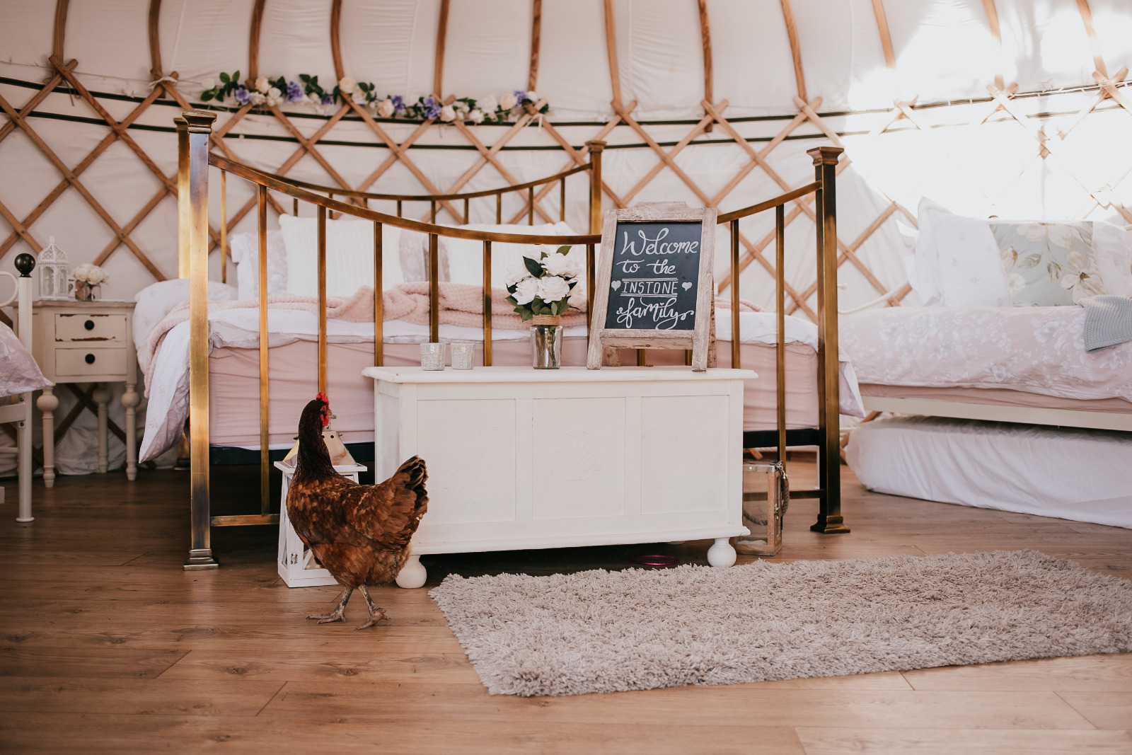 chicken in Potters lodge luxury yurt